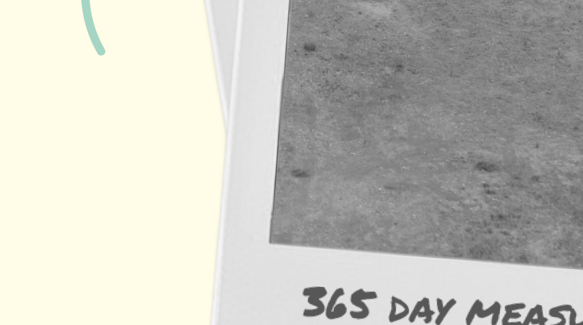 365 Day Measurement 03